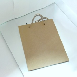 22621 PACK OF 12 CARDBOARD 15 X 20 X 6 CM BAGS