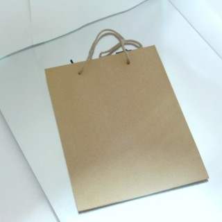 22623 PAQUETE 12 BOLSAS PAPEL 24 X 33 X 8 CM COLOR CARTON