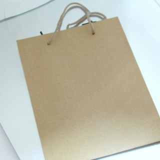 22625 PACK OF 12 CARDBOARD 31 X 42 X 10 CM BAGS