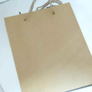 22626 PACK OF 12 CARDBOARD 38 X 50 X 12 CM BAGS