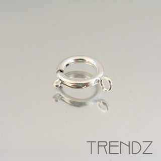 17605 PLATA PACK OF 10 ROUND SPRING RING CLASPS