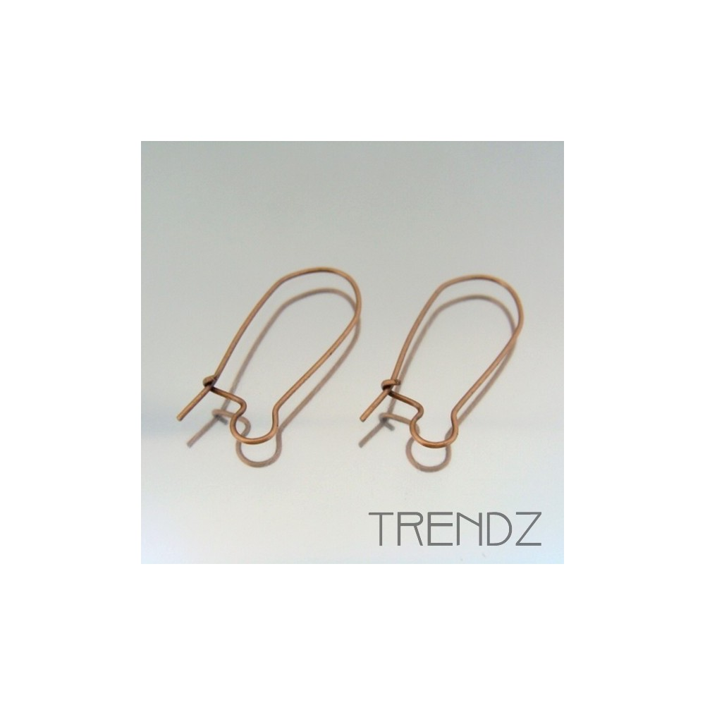 18066 COBRE PACK OF 25 PAIRS OF EARRING HOOKS