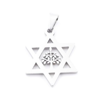 38869 STAINLESS STEEL STAR OF DAVID 33 X 26 MM PENDANT