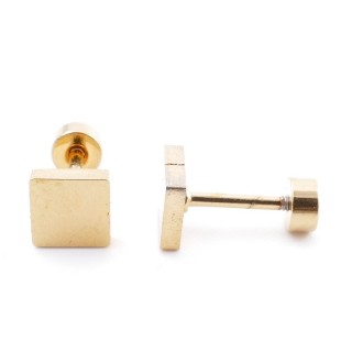38534-09 GOLD STAINLESS STEEL EARRINGS WITH SCREW BACKS