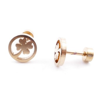 38534-12 GOLD STAINLESS STEEL EARRINGS WITH SCREW BACKS