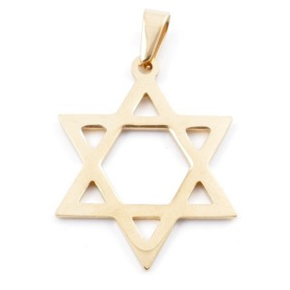 49556-14 STAINLESS STEEL PENDANT IN SHAPE OF STAR OF DAVID 39 X 30 MM